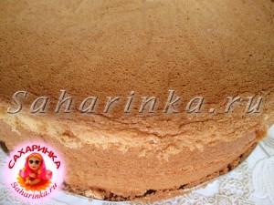 домашний бисквит рецепт с фото